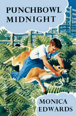 Punchbowl Midnight - Punchbowl Farm (Paperback)