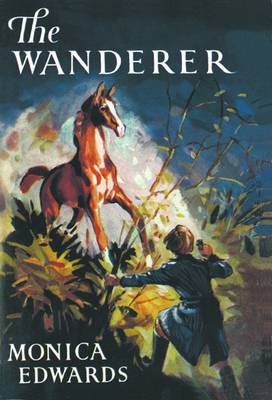 The Wanderer - Punchbowl Farm (Paperback)