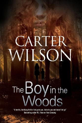 The Boy in the Woods (Paperback)