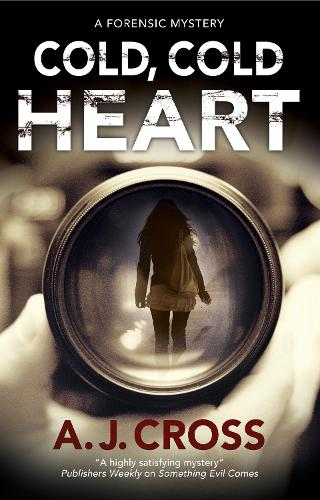 Cold, Cold Heart - A Kate Hanson mystery (Paperback)