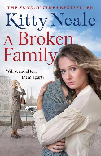 A Broken Family (Paperback)