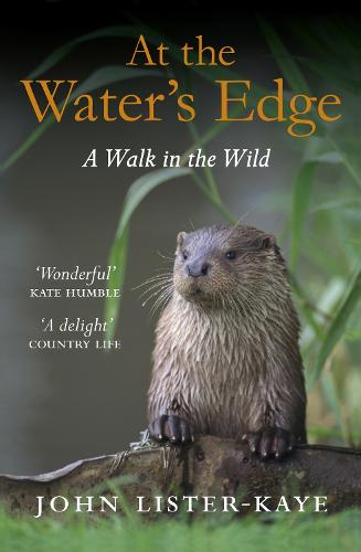 At the Water's Edge: A Walk in the Wild (Paperback)