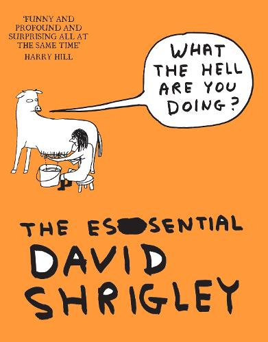 What The Hell Are You Doing?: The Essential David Shrigley (Paperback)
