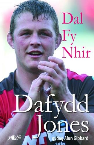 Dal fy Nhir - Hunangofiant Dafydd Jones (Paperback)