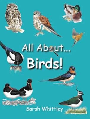 All About Birds (Hardback)