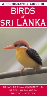 A Photographic Guide to Birds of Sri Lanka (Paperback)