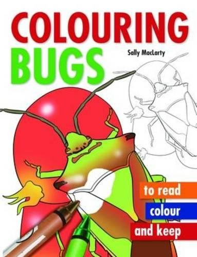 Colouring Bugs (Paperback)