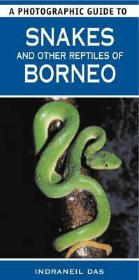 A Photographic Guide to Snakes & Other Reptiles of Borneo (Paperback)