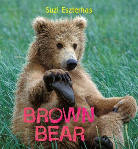 Brown Bear (Hardback)