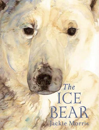 The Ice Bear Mini Edition (Hardback)