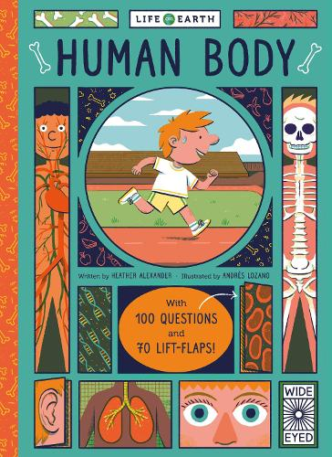 Life on Earth: Human Body: With 100 Questions and 70 Lift-flaps! - Life on Earth (Board book)