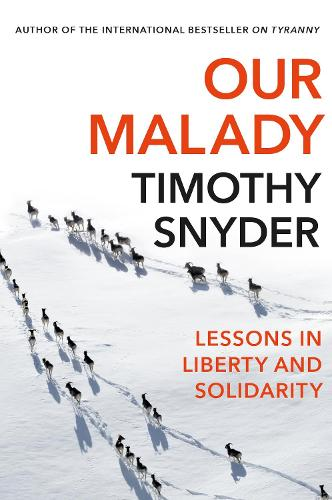 Our Malady: Lessons in Liberty and Solidarity (Paperback)