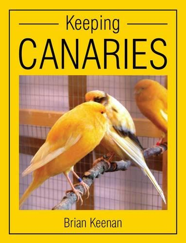 Keeping Canaries (Paperback)