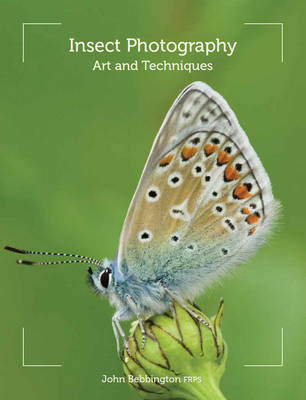 Insect Photography: Art and Techniques (Paperback)