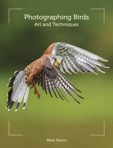 Photographing Birds: Art and Techniques (Paperback)