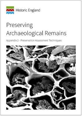 Preserving Archaeological Remains: Appendix 2 - Preservation Assessment Techniques (Paperback)