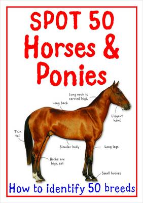 Spot 50 Horses and Ponies - Spot 50's (Paperback)