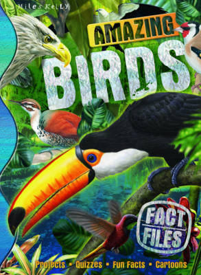 Fact Files Amazing Birds - Fact Files (Spiral bound)