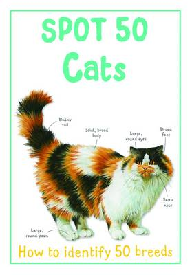Spot 50 Cats - Large Spot 50 Series (Paperback)