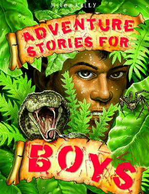 Adventure Stories for Boys (Paperback)