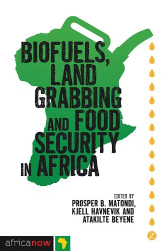 Biofuels, Land Grabbing and Food Security in Africa - Africa Now (Hardback)