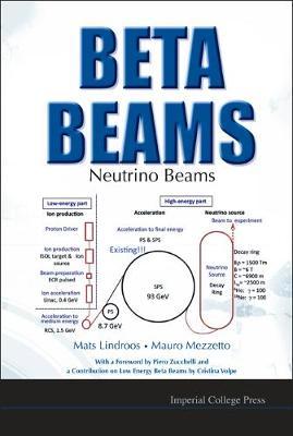 Beta Beams: Neutrino Beams (Hardback)