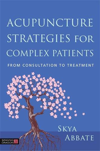 Acupuncture Strategies for Complex Patients: From Consultation to Treatment (Paperback)
