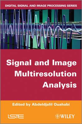 Signal and Image Multiresolution Analysis (Hardback)