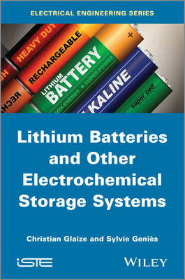 Lithium Batteries and Other Electrochemical Storage Systems: Lithium, Sodium-sulfur, Nickel Chloride and Redox Flow (Hardback)