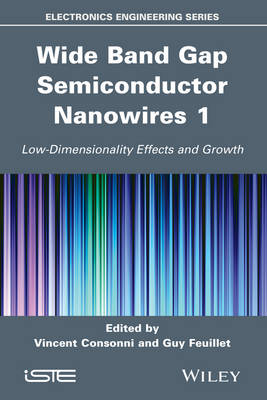 Wide Band Gap Semiconductor Nanowires 1: Low-Dimensionality Effects and Growth (Hardback)