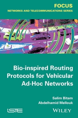 Bio-inspired Routing Protocols for Vehicular Ad-Hoc Networks (Hardback)