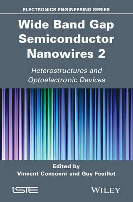 Wide Band Gap Semiconductor Nanowires 2: Heterostructures and Optoelectronic Devices (Hardback)