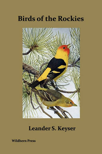 Birds of the Rockies (Illustrated Edition) (Paperback)
