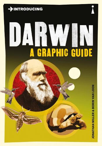 Introducing Darwin: A Graphic Guide - Introducing... (Paperback)