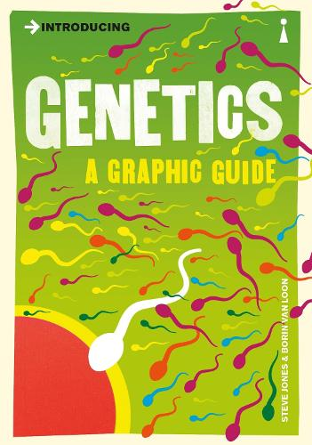 Introducing Genetics: A Graphic Guide - Introducing... (Paperback)