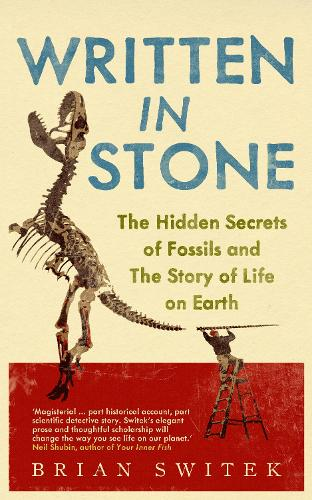 Written in Stone: The Hidden Secrets of Fossils and the Story of Life on Earth (Paperback)