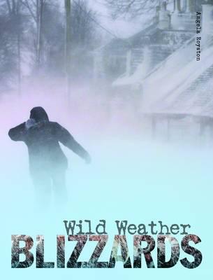 Blizzards - Wild Weather (Paperback)