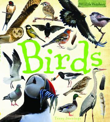 Birds - Wildlife Watchers (Hardback)