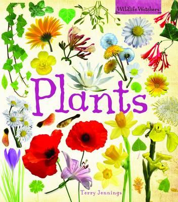 Plants - Wildlife Watchers (Hardback)