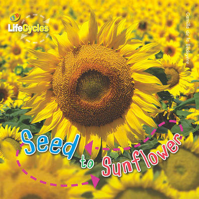Lifecycles: Seed to Sunflower (Paperback)