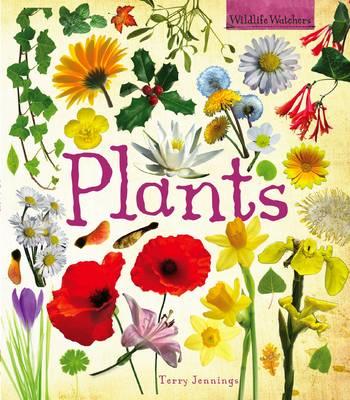 Plants - Wildlife Watchers (Paperback)