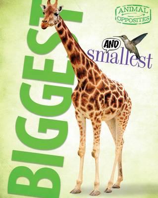 Biggest and Smallest - Animal Opposites (Hardback)