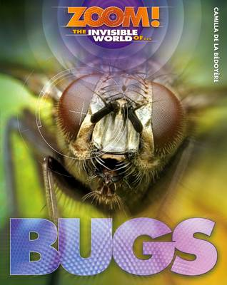 Zoom! The Invisible World of Bugs - Zoom! The Invisible World of... (Hardback)