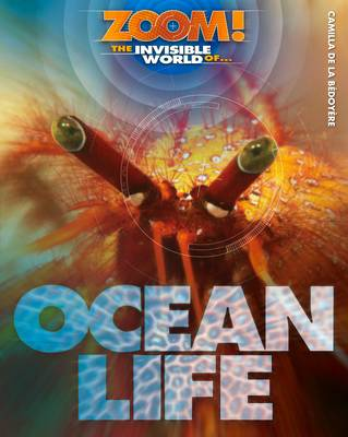 Zoom! The Invisible World of Ocean Life - Zoom! The Invisible World of... (Hardback)