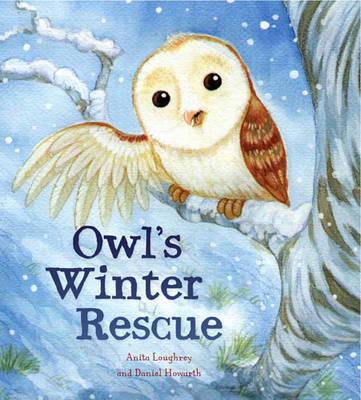 Animal Seasons: Owl's Winter Rescue - Animal Seasons (Hardback)