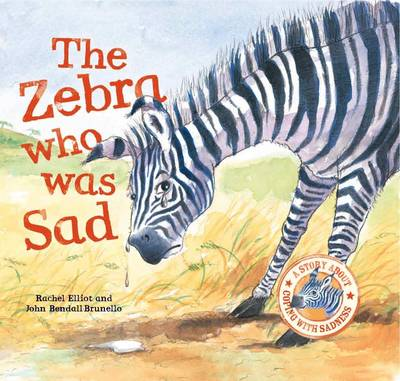 The Zebra Who Was Sad - When I Was... (Paperback)