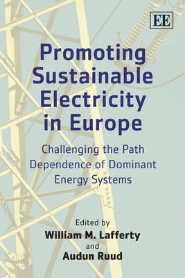 Promoting Sustainable Electricity in Europe: Challenging the Path Dependence of Dominant Energy Systems (Paperback)