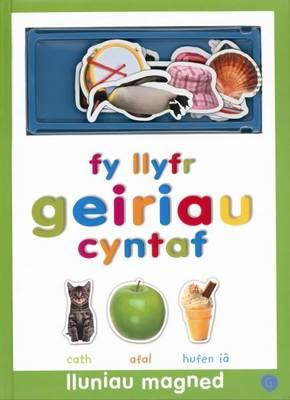 Fy Llyfr Geiriau Cyntaf - Lluniau Magned (Hardback)