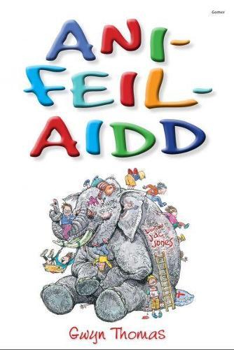 Ani-Feil-Aidd (Paperback)