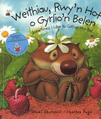 Weithiau, Rwy'n Hoff o Gyrlio'n Belen/Sometimes I like to Curl up in a Ball (Paperback)